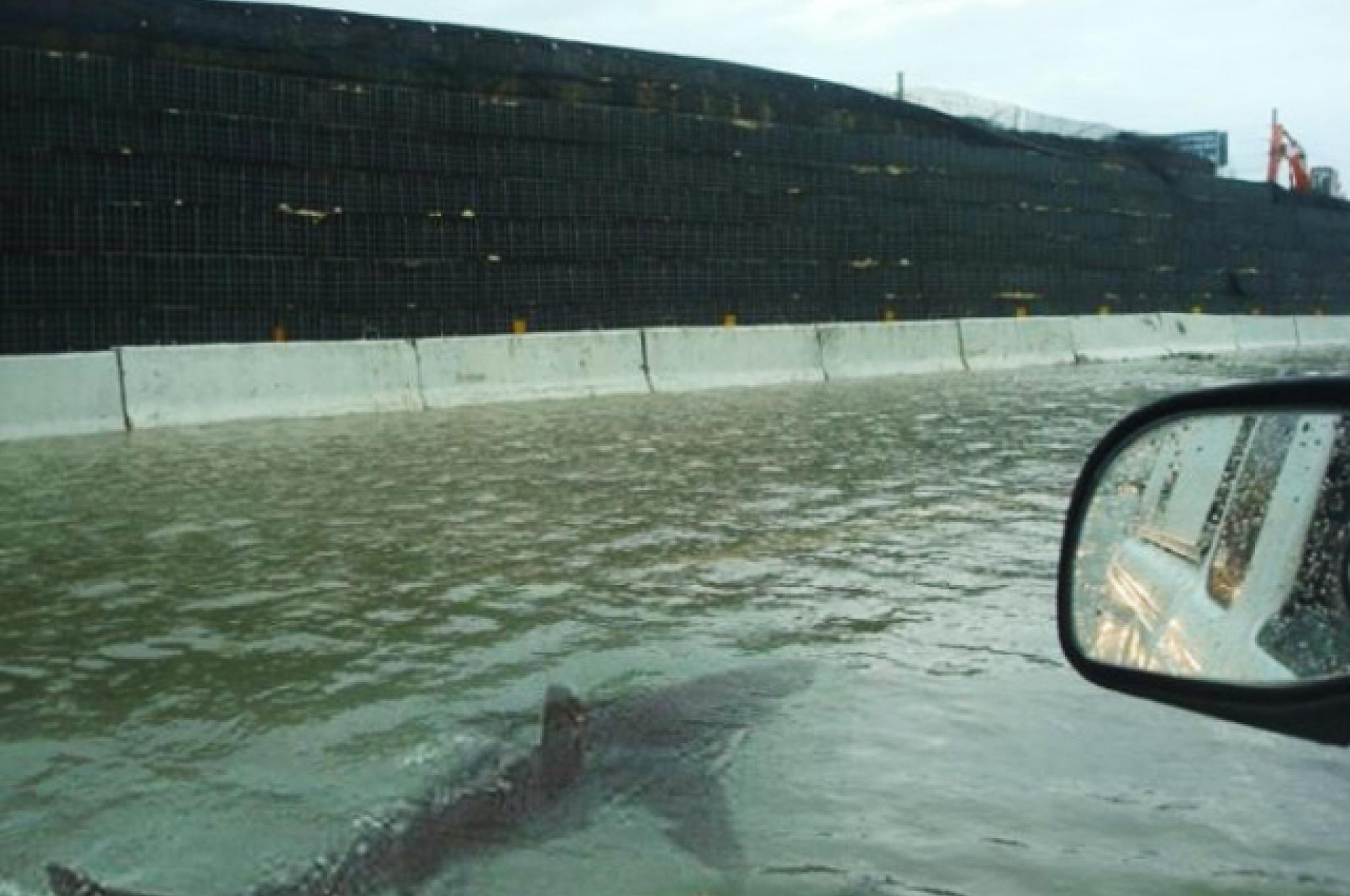 Fake photo of shark swimming on Houston highway