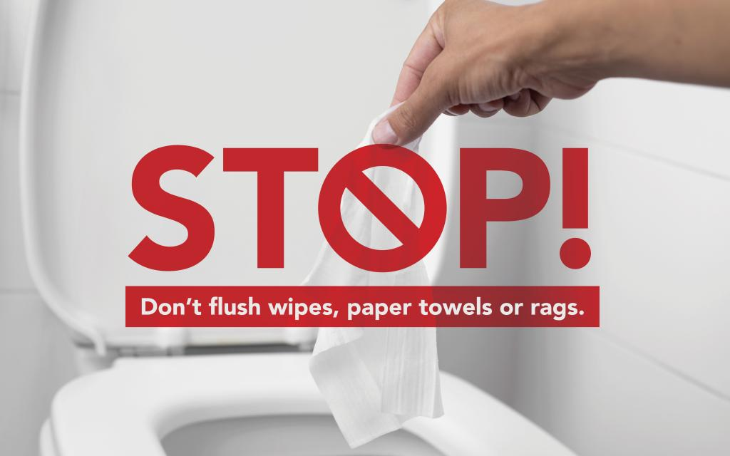Don't flush wipes image